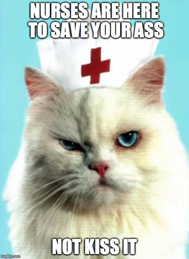 Nurse memes save ass