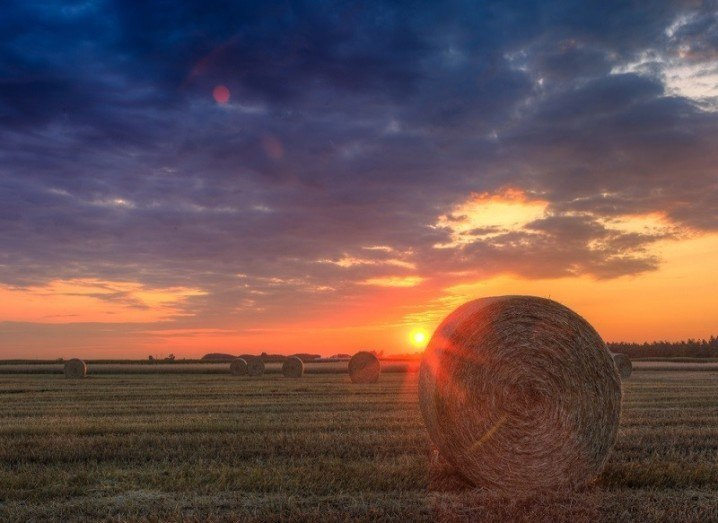 Sustainable farming hay bale