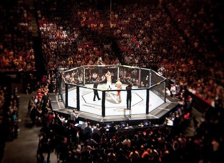 UFC ring