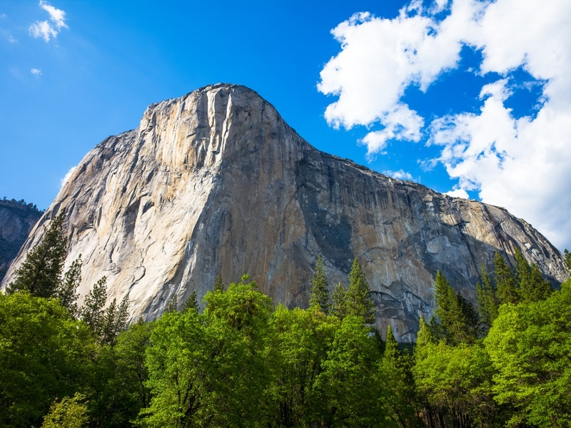 Apple launches iOS 9 and El Capitan public betas
