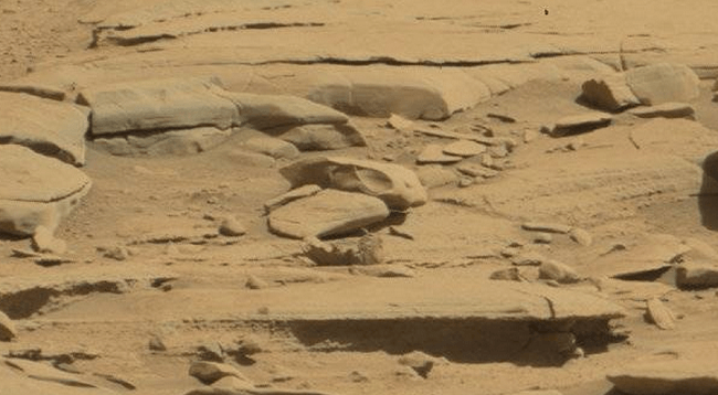 Strange objects on Mars dinosaur skull