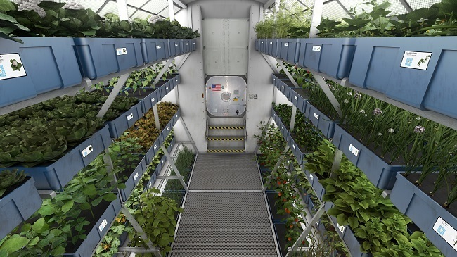 NASA astronauts growhouse