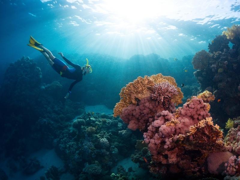 Move over Great Barrier Reef, Australia has new hidden treasures