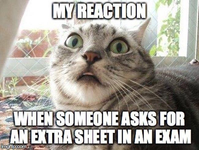 Memes | Leaving cert results | extra paper