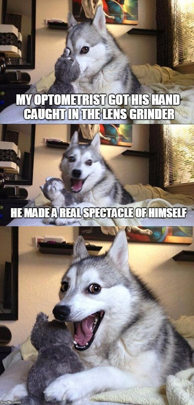 Optometrists: Pun dog - optometrist caught in lens grinder. Made a spectacle of himself