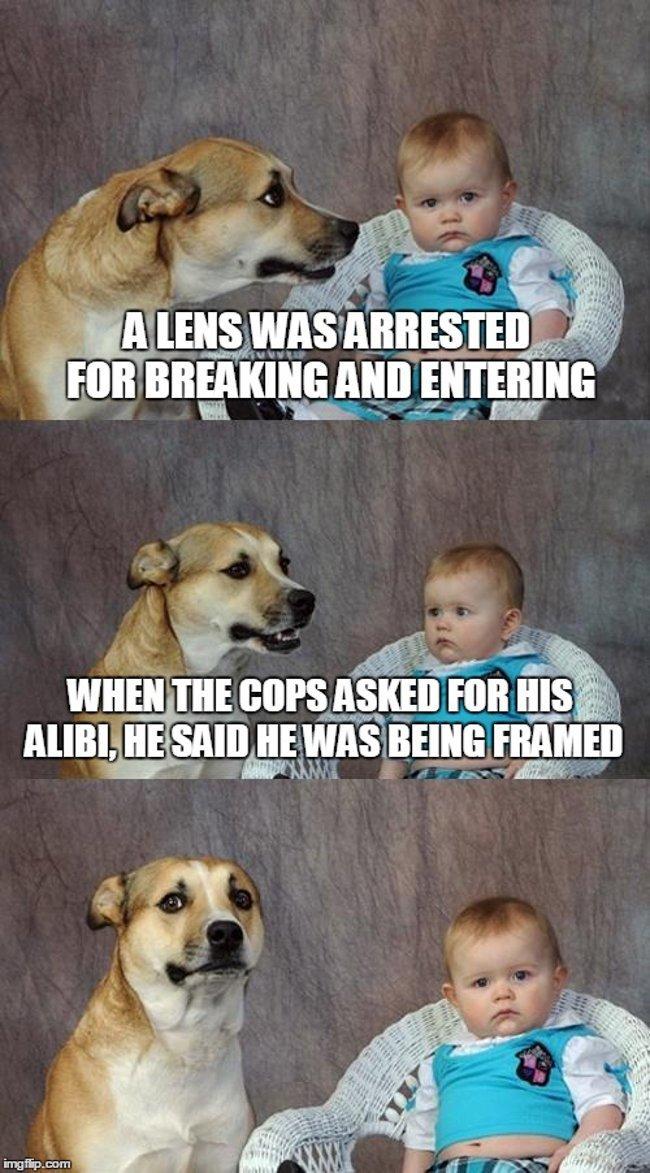 Optometrists: Dad joke dog - Lens arrested. Asked for alibi. Said he was being framed.