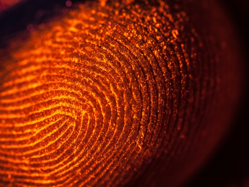 Hackers stealing fingerprint data a real danger, say researchers