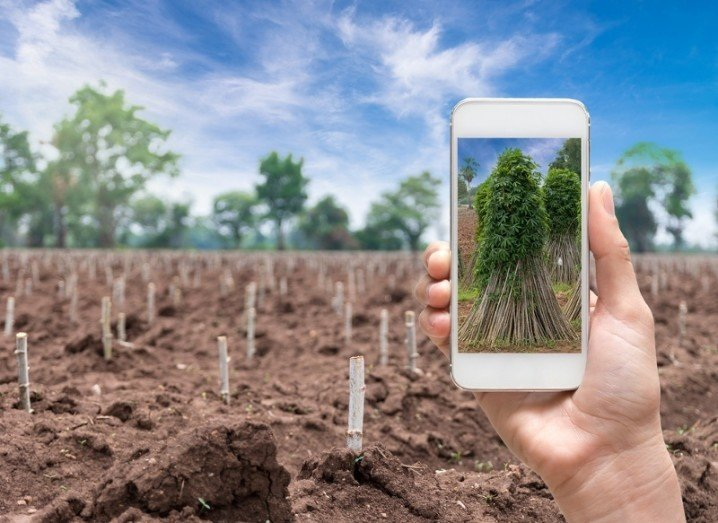 smart-agriculture-shutterstock