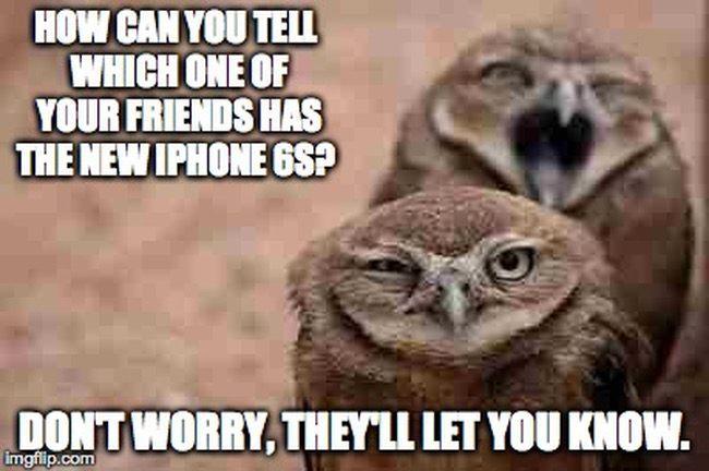 Apple Fanboy meme