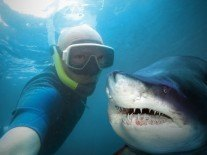 Selfies kill more people than sharks do