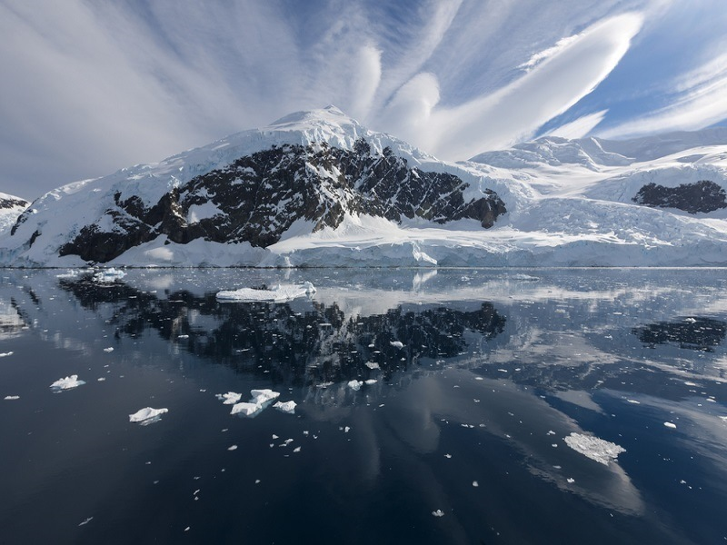 Southern Ocean shows signs of resurgence as world carbon sink