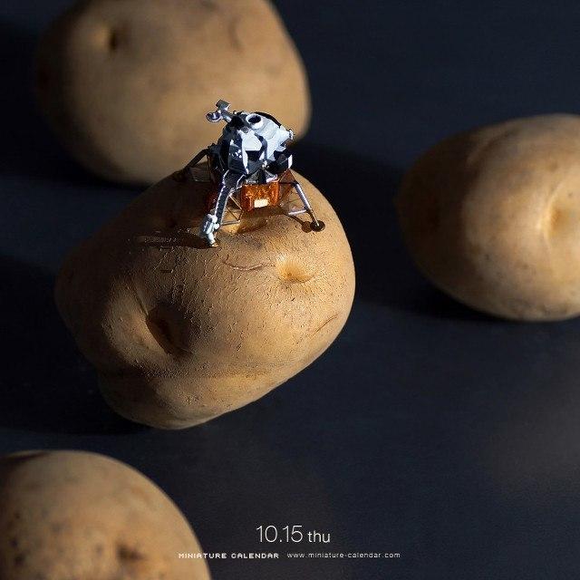 Asteroid, Miniature Calendar