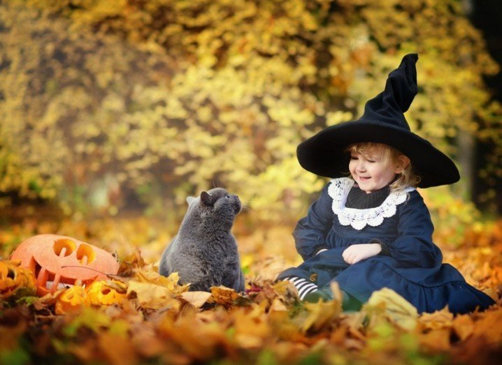 Maths Week Challenge: cat with young girl dressed as witch