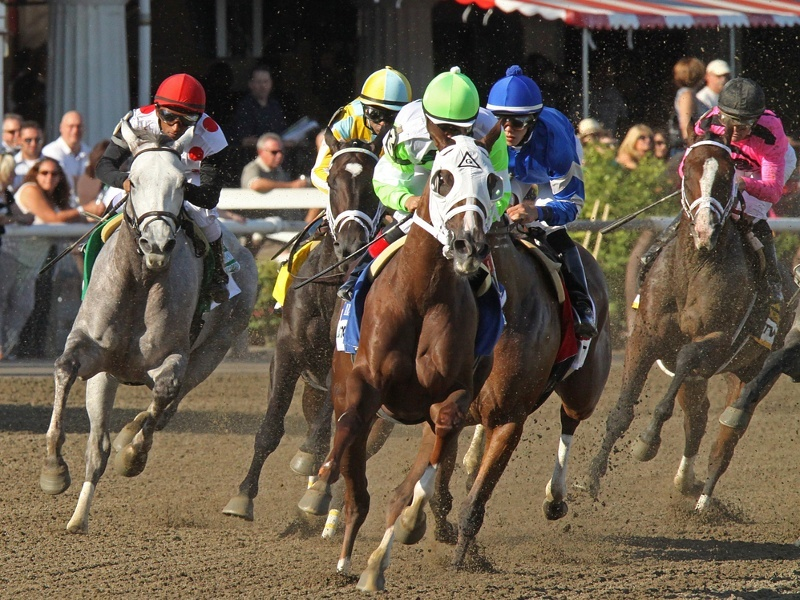 Equilume makes a break for lucrative US horse-breeding market