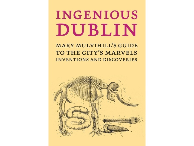 Best Books: Ingenious Dublin - Mary Mulvihill