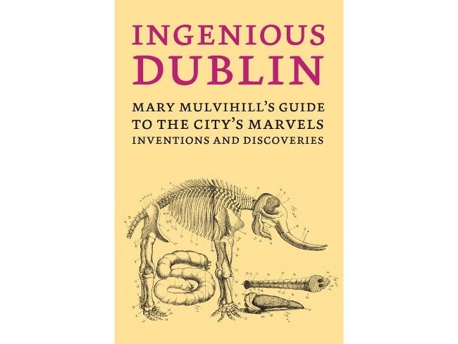 Best Books: Ingenious Dublin - Mary Mulvihill