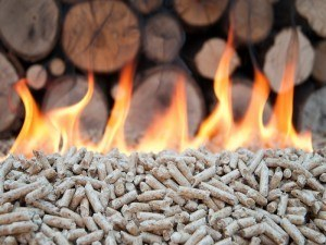 Alternative Heat biomass