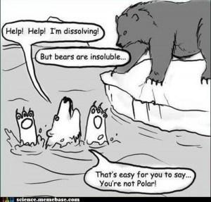 Polar bear science puns