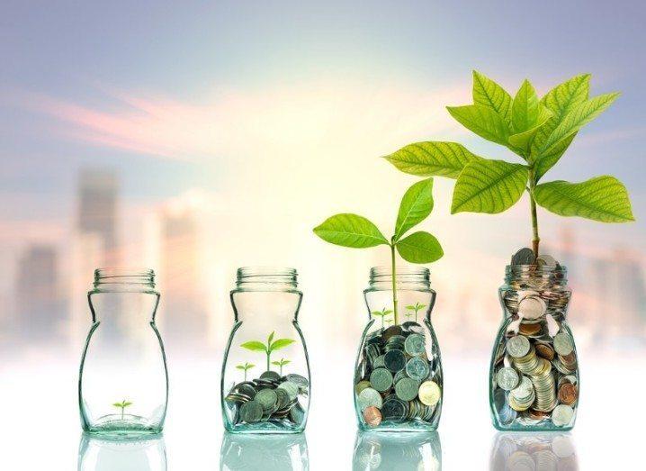 seed-capital-shutterstock