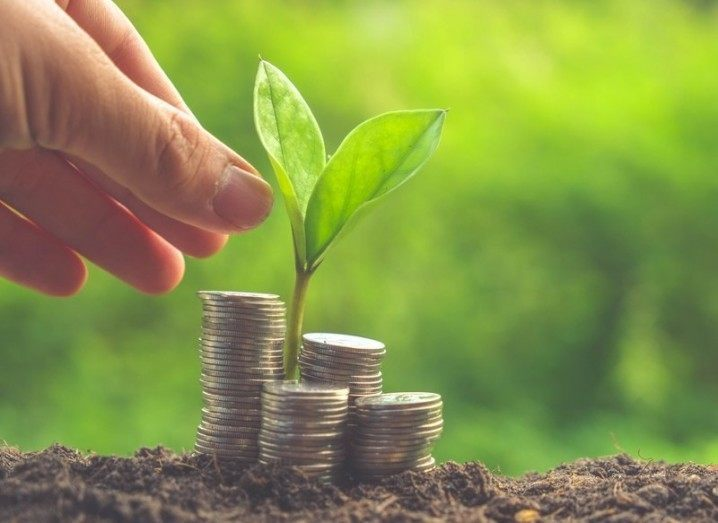 Female investors: seed growing from money