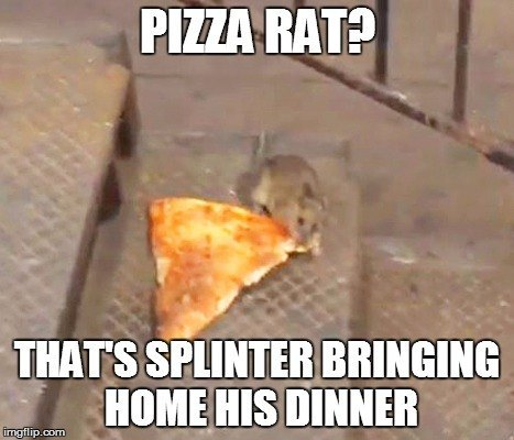 Pizza Rat Splinter