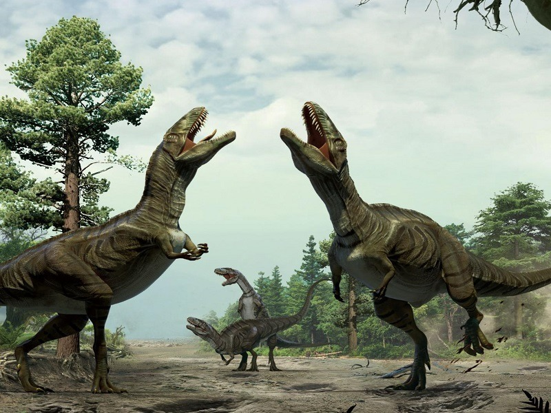 Dinosaur mating ritual was less Rocky, more Flashdance