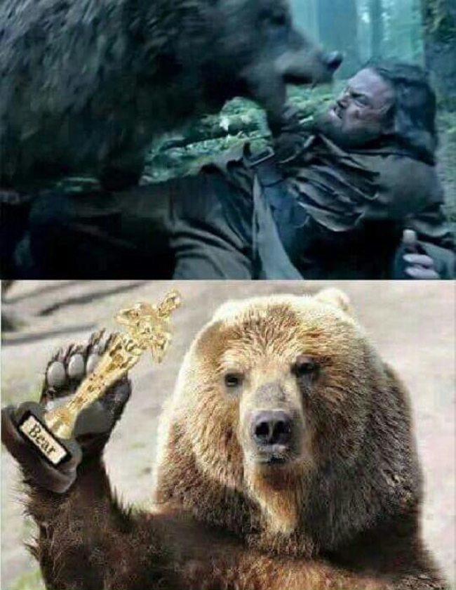 Oscar: Leo gets beaten by bear in The Revenant