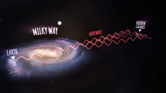 Great Attractor galaxies