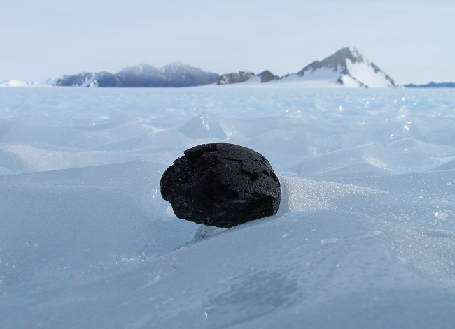 Antartic meteorite