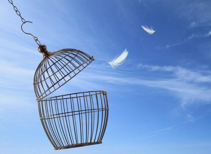 bird-cage-twitter-shutterstock