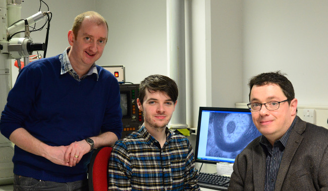 Researchers based at the University of Cork's (UCC) APC Microbiome Institute have discovered a direct link between gut bacteria and myelination, expanding our knowledge of neurological performance. APC Microbiome Institute's Dr Gerard Clarke, Alan Hoban and Prof John Cryan – via Dr Alexander Zhdanov