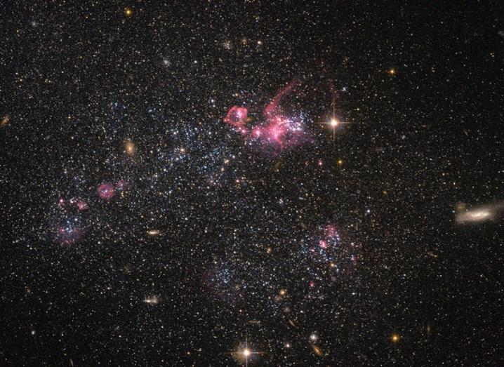 Dwarf galaxy UGC 4459