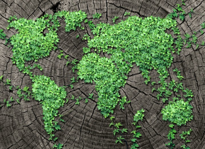 Google: Earth Day, map of the world in plants