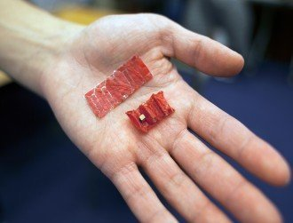 Ingestible origami robot can crawl into your stomach and heal wounds