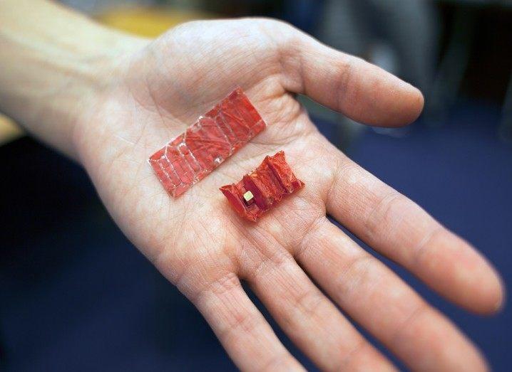 Ingestible origami robots
