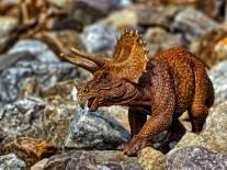 Meet Judith, the horned dinosaur that time forgot