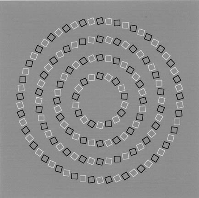 no-spiral Optical Illusion