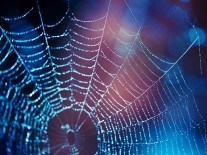 MHC Tech Law: Untangling the web of liability in the internet of things
