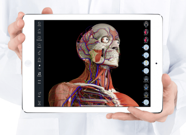 3D4MEDICAL_anatomy