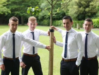 IT Sligo students awarded for designing automatic post driver for tractors