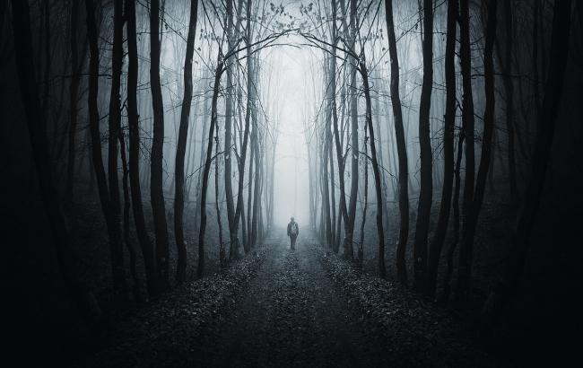 Maths: person walking through woods at night