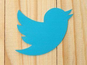 twitter_bird_shutterstock