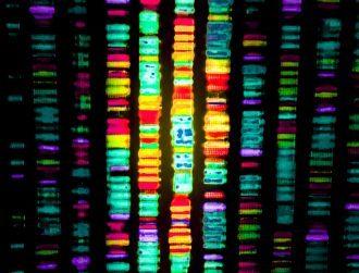 Motor neurone disease breakthrough as new genes discovered