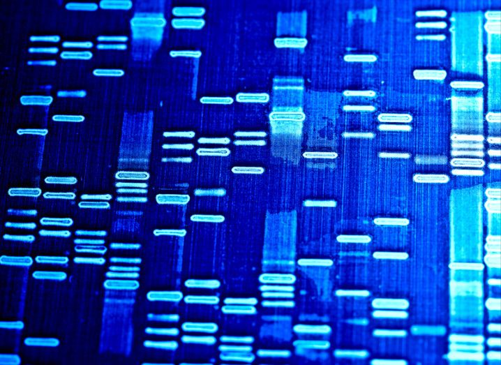 DNA data storage