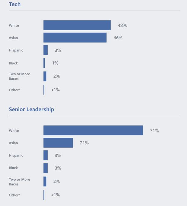 Facebook diversity race.
