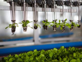 Climate-smart agriculture: The latest attempt to go green