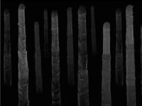 Irish research leads to nanowire breakthrough