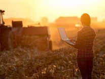 Here are three agritech start-up supports running in Ireland right now
