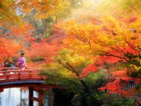 Google Doodle celebrates autumnal equinox ringing in new season