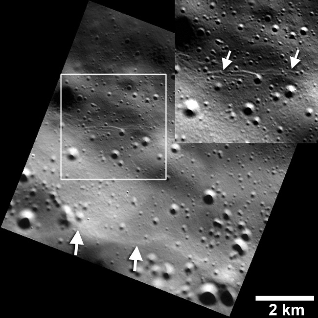 Mercury tectonic